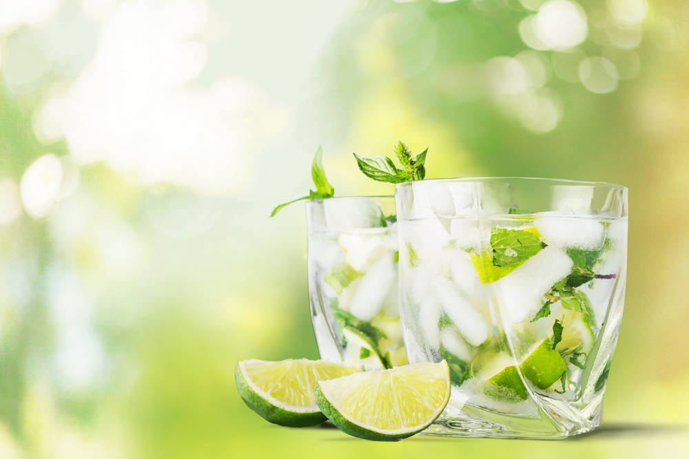 Lime Fizz Cocktail
